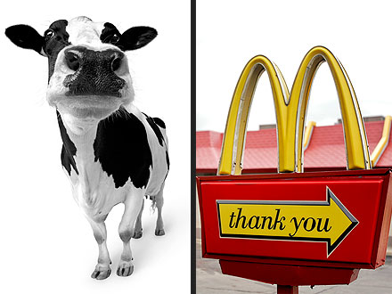 Dairy Cow Walks Up to McDonald's Drive-Thru