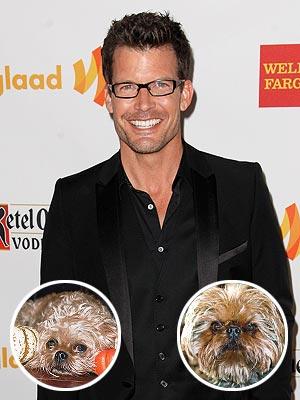 Mark Deklin's Little Dogs Have Big Personalities
