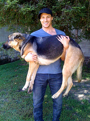 Twilight's Alex Meraz Adopts Dog