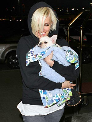 Ashlee Simpson New Dog Pictures