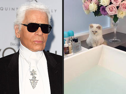 Karl Lagerfeld&#39;s Cat Choupette is More Famous Than Him