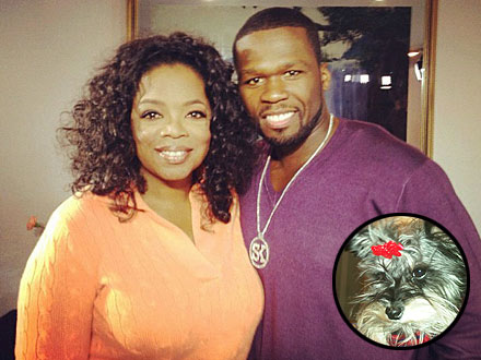 50 Cent Has Dog Named Oprah, Cat Named Gayle