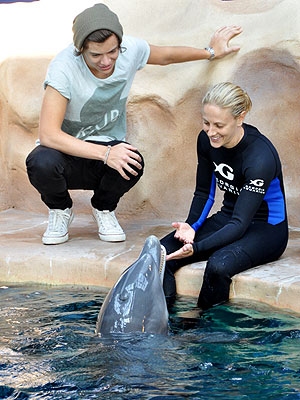 One Direction's Harry Styles Meets a Dolphin