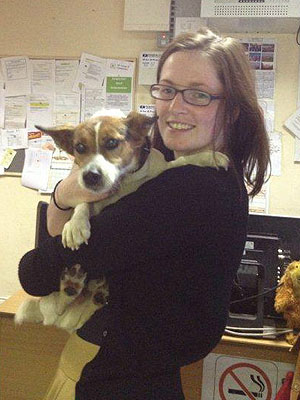500 Tweets Help Reunite a Lost Dog with His Owner
