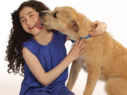 Shelter Dog Sunny Cast in Broadway Revival of Annie