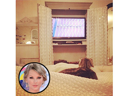 London 2012: Taylor Swifts Cat Meredith Watches Olympics