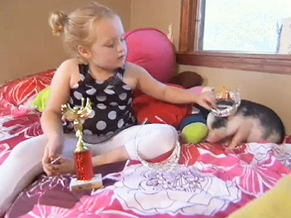 Honey Boo Boo Child&#39;s Mom June Losing Sleep over Pet Pig Glitzy