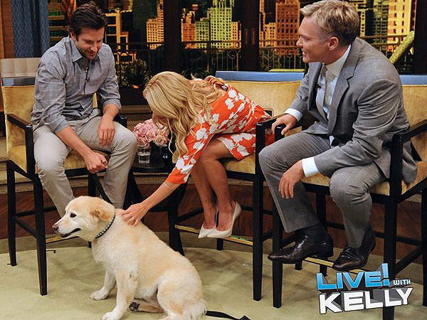 Bradley Cooper&#39;s Dog on Live With Kelly: Video