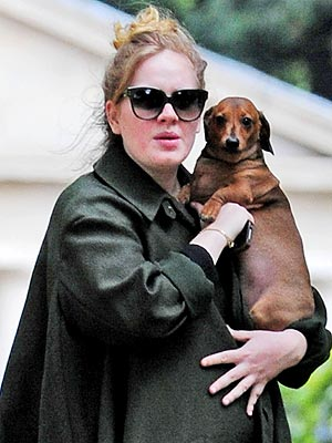 Pregnant Adele with Dog Louie in London: Photo