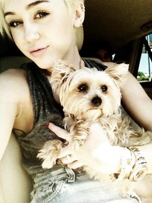 Miley Cyrus's Dog Lila Is in the Hospital
