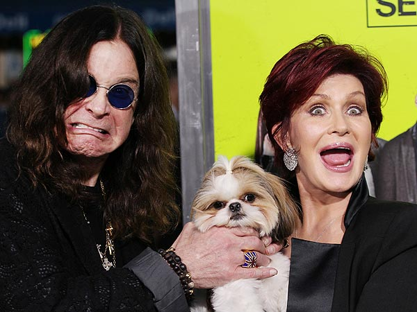 Seven Psychopaths Premiere Photos with Dog Bonny