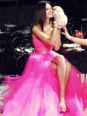 Kendall Jenner Poses with Kylie's Puppy Adam (While Wearing a Formal Gown!)