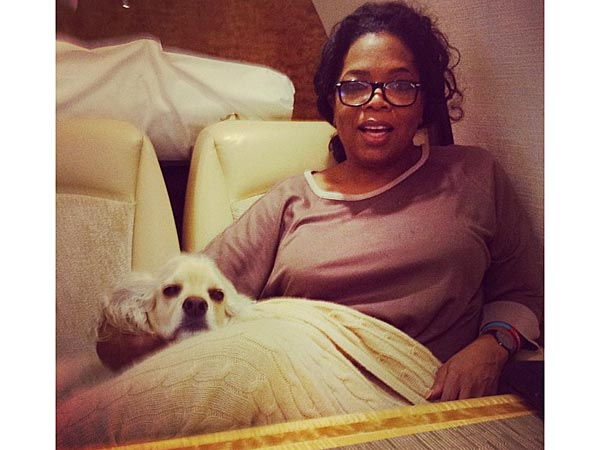 Oprah's Real Favorite Things? Her Dogs