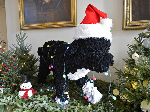 Bo Obama Featured in White House Christmas Decorations