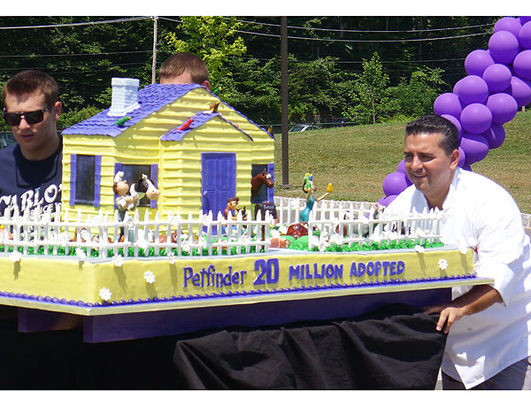 Cake Boss Buddy Valastro Makes Cake for Petfinder