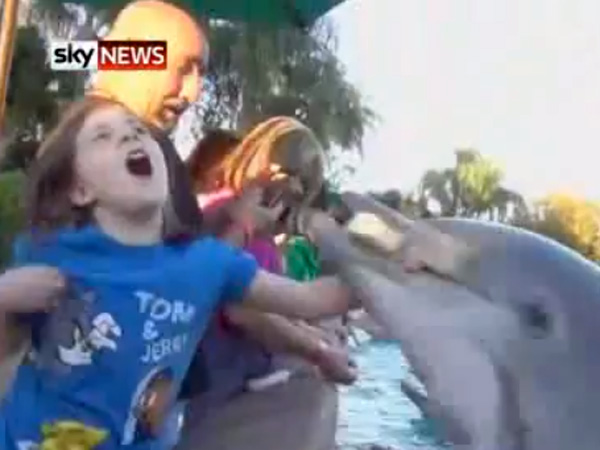 SeaWorld on Defense Over Dolphin Attack