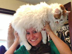 PHOTOS: Cats as Hats!