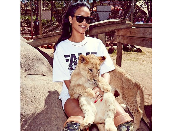 Rihanna Meets Animals in Africa: photos