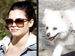 Stars and Their Pets: Jenna Dewan-Tatum's Sunny Stroll