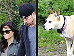 Stars and Their Pets: Channing & Jenna Tatum's Across-the-Pond Pooches | Channing Tatum, Jenna Dewan