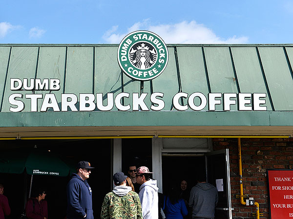 'Dumb Starbucks' Draws Crowds – and Some Questions