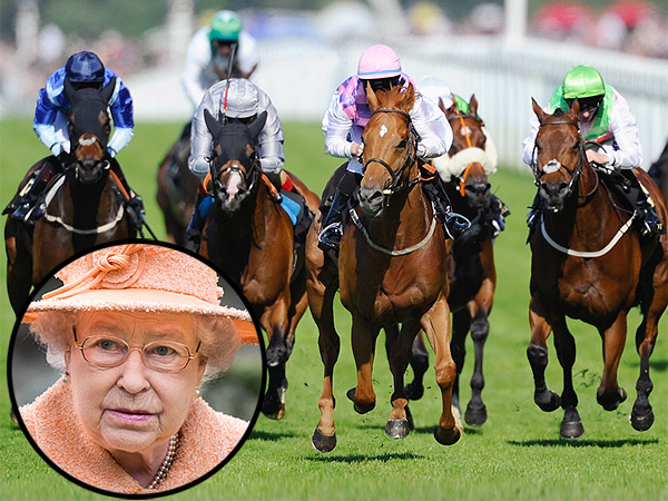 Queen Elizabeth's Royal Ascot Racehorse Fails Dope Test