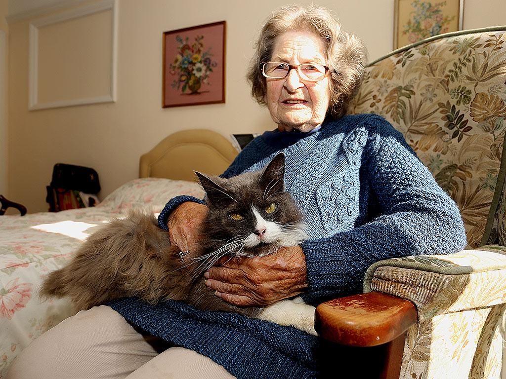 Cat Finds Owner in Nursing Home