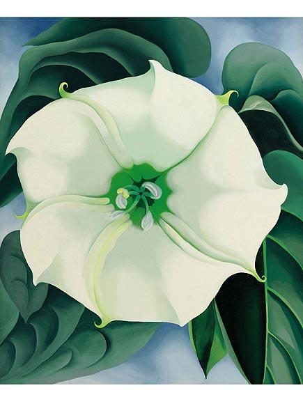 Georgia O'Keeffe Paint...