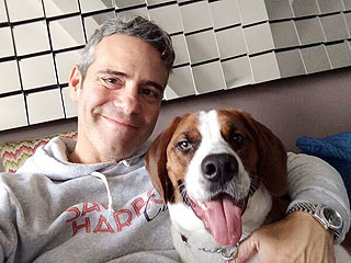 Andy Cohen Is 'Madly in Love' – with His Dog! | Animals & Pets, Stars and Pets, Pet