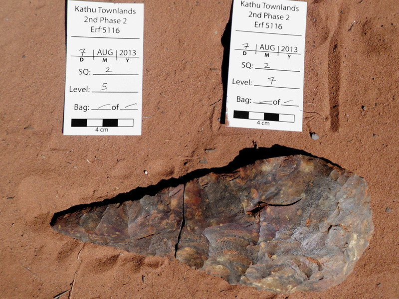 Kathu Townlands Yield Million-Year-Old Fossils in South Africa