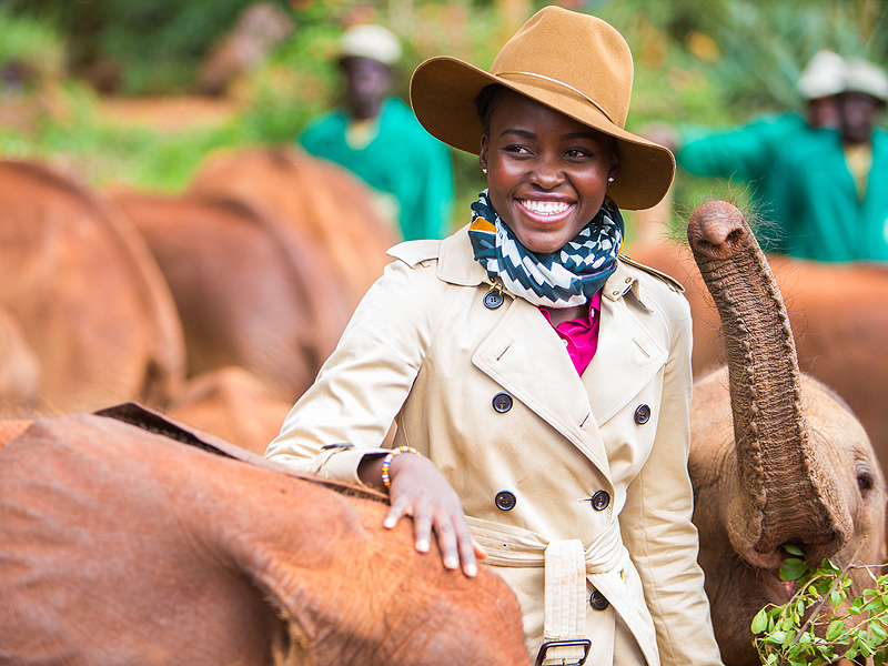 Lupita Nyong'o Partners with Elephant Conservation Efforts in Kenya