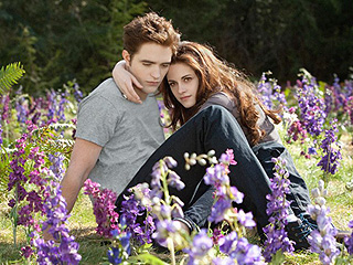 A Twihard's Dream! New Twilight Novel Features Gender-Swapped Tale of Beau and Edyth