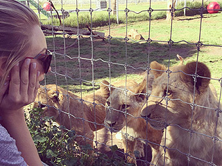 Kaley Cuoco Celebrates 30th Birthday with 12 Best Girlfriends 'on the Trip of a Lifetime' at Wildlife Animal Sanctuary