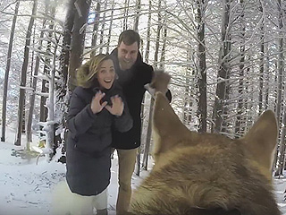 Owners Let Their Dog Film Their Wedding Video  —  and It's 'Magical'