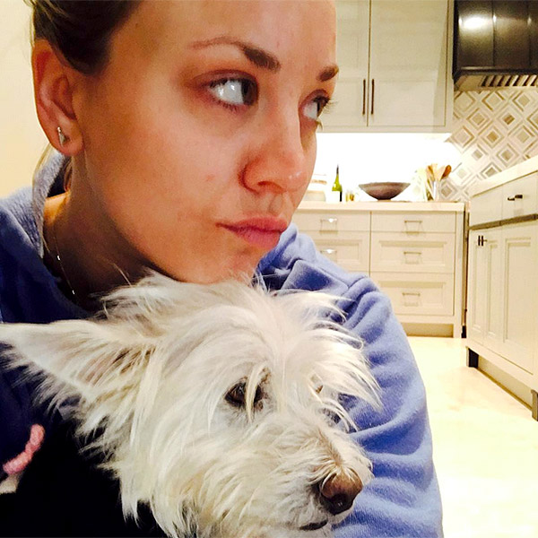 Kaley Cuoco's Dog Chester Has Died