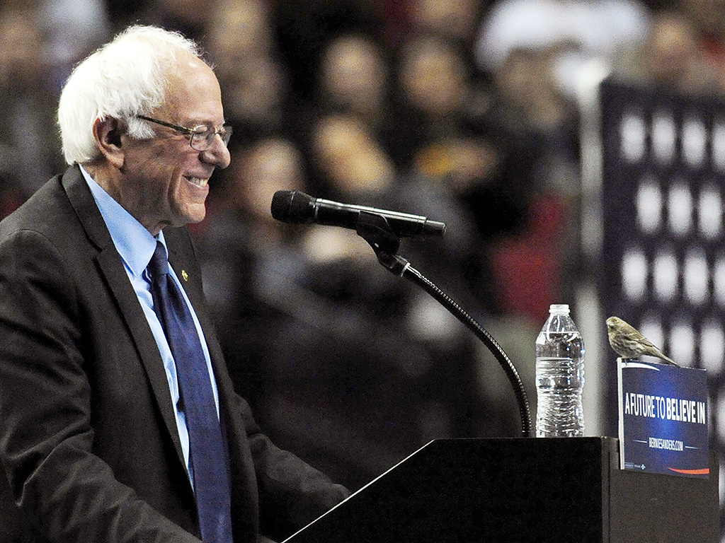 Could Bernie Sanders Win the Nomination After His Surprise Indiana Victory?