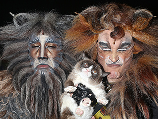 Purr-fect! Grumpy Cat Makes History in Broadway's Cats