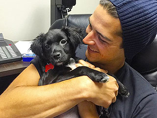 The Bachelorette's Wells Adams Loves Dogs Just as Much as You Love Him