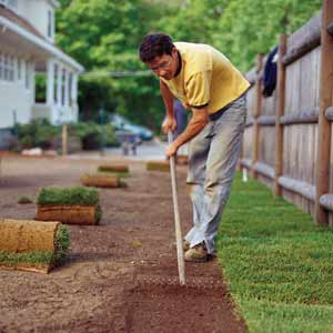 man putting down sod in his yard