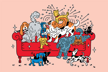 illustration of many dogs on a couch