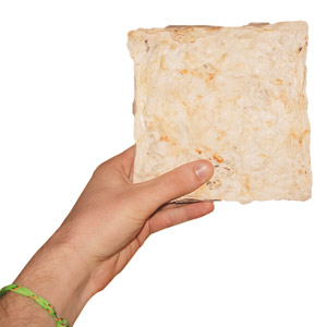hand holding a piece of mushroom insulation