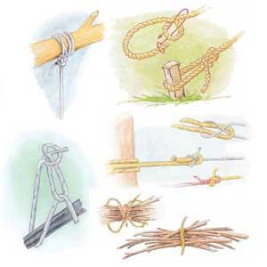 5 Knots