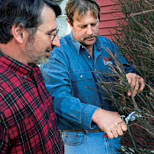 Roger Cook demonstrates using a bypass pruner on small, live branches