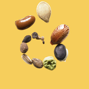 Pumpkin seed with assorted Seeds
