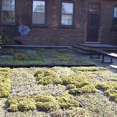 an example of a green roof