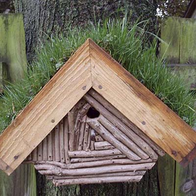 an inventive green birdhouse roof