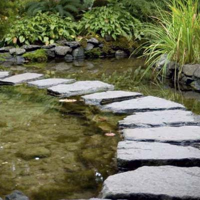 pond with a stone step-path
