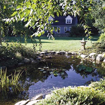 pond with surrounding stone and plants as centerpiece in front yard