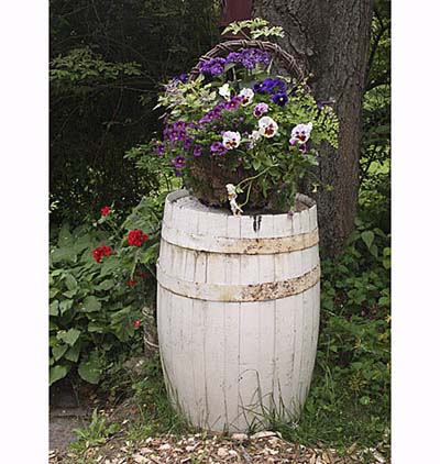 Springtime flowers in barrel