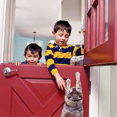 Dutch door bought on Craigslist